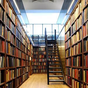 Библиотеки Заинска